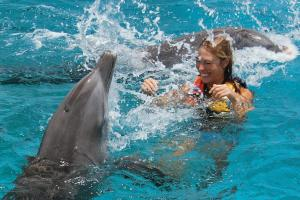 Swim with Delphins