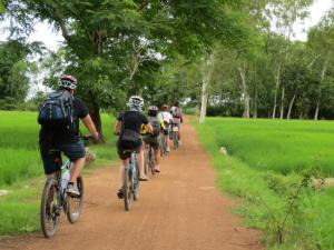 Bike Tour Packages